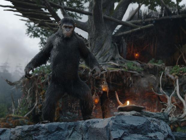 dawn-apes.jpg