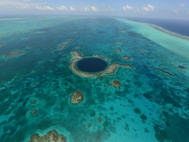 web-coral-reef-ap.jpg