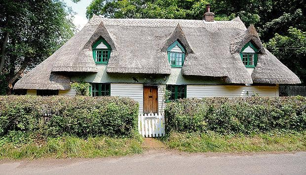 620-thatchedDetached-house-.jpg