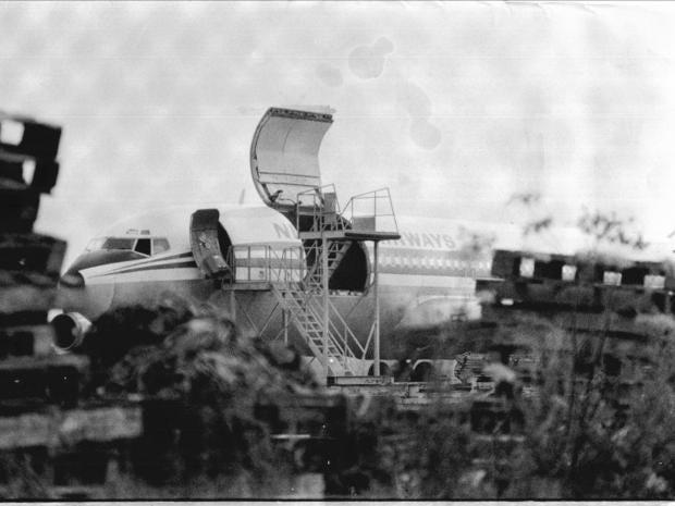 50.plane.rex.jpg