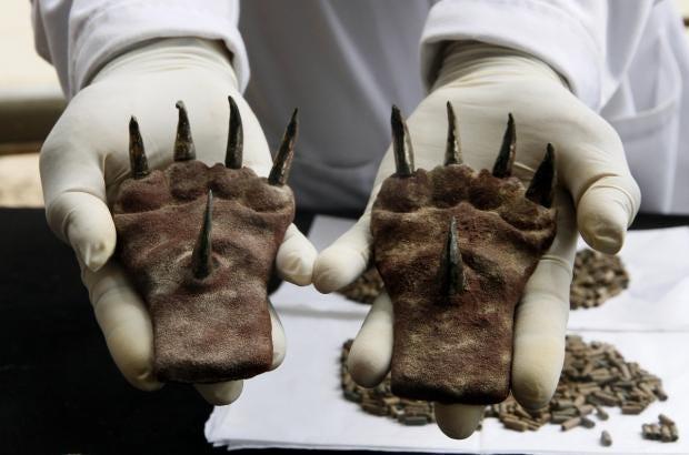 pair-metal-claws-found-tomb-moche-culture-recently-excavated-huaca-de-la-luna.jpg