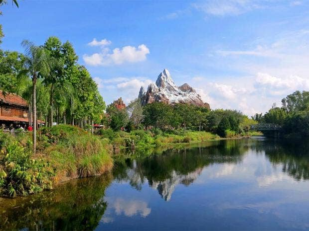 disney animal kingdom.jpg