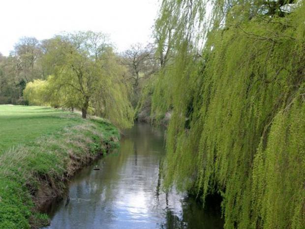 River-sowe.jpg