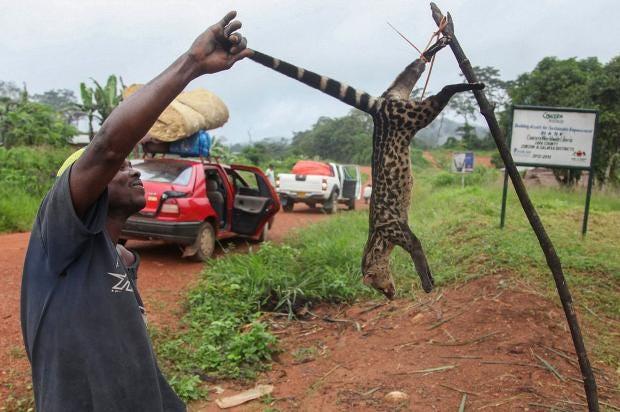 Ebola11.jpg