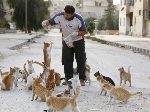 Syrianambualnce.jpg