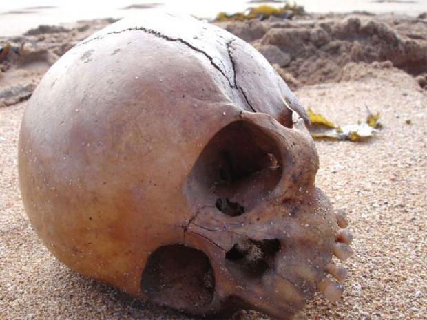 Skull_found_1.jpg