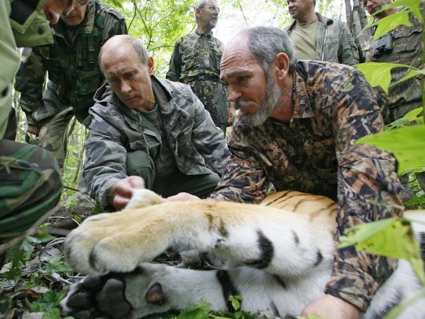 PUtin-tiger.jpg