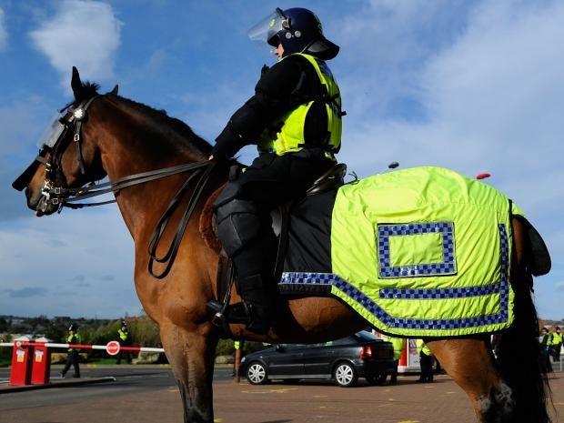 Police-horse.jpg