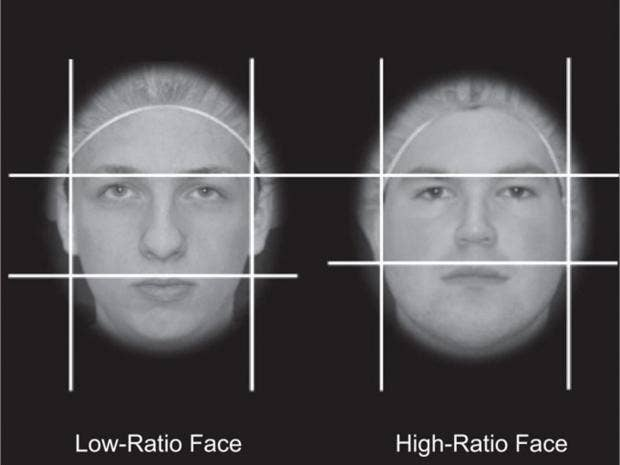 face_structure.jpg