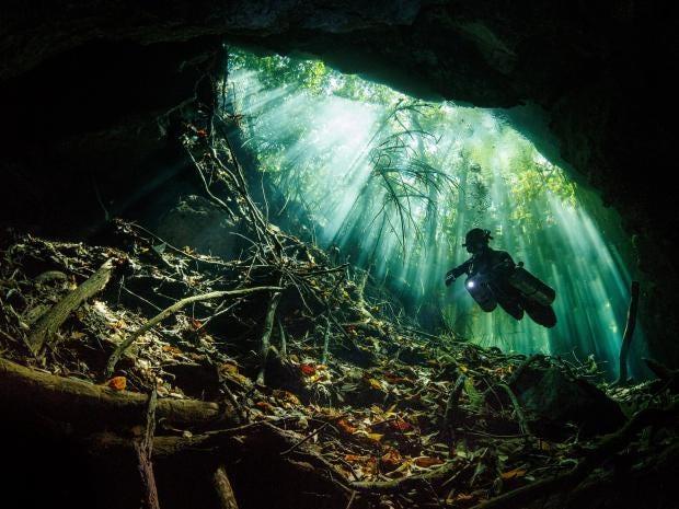 Terry_Steeley_Taj_Mahal_Cenote.jpg