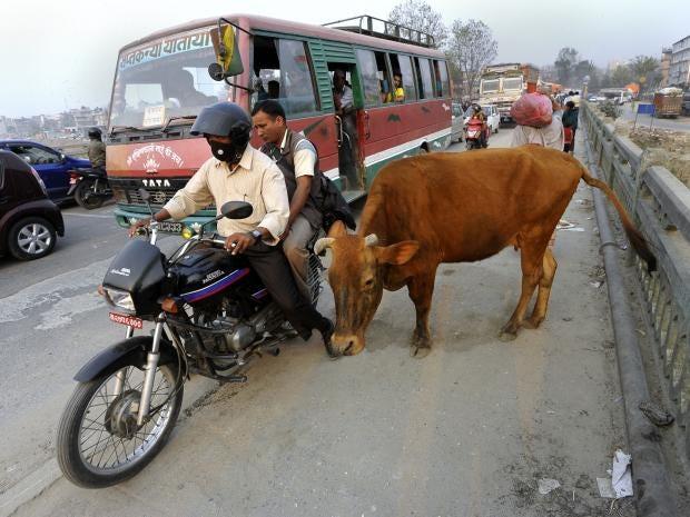 31-Nepal-AFP-Getty.jpg