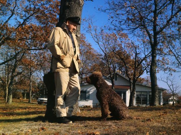Image result for John Steinbeck's America