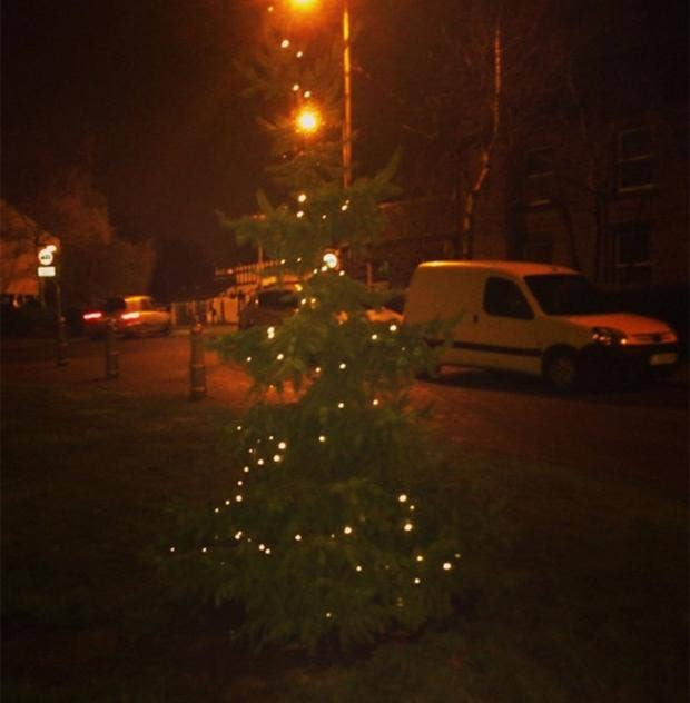 Mottram-Christmas-tree.jpg