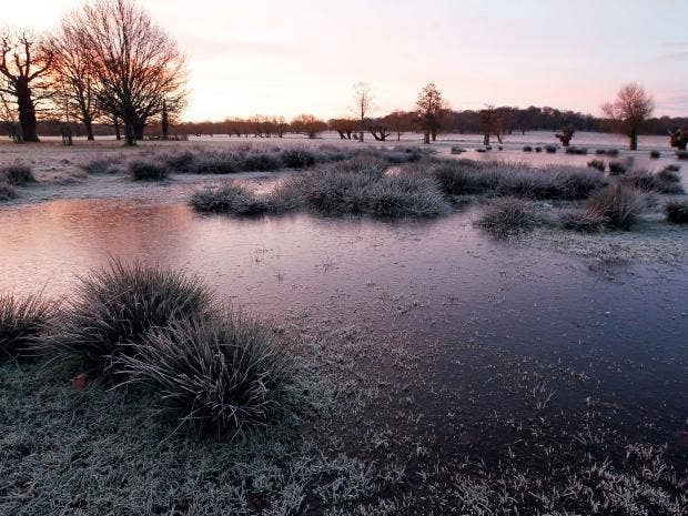winter-UK-3.jpg