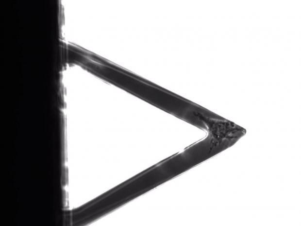 nanosensor.jpg