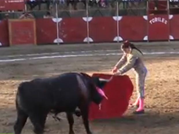 Bull-fighting_1.jpg