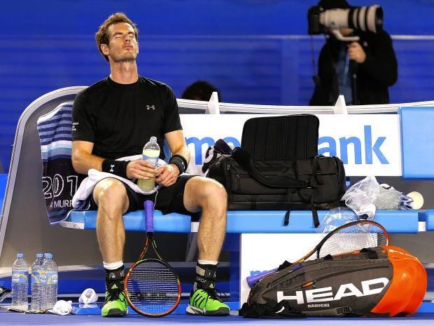 Andy-Murray.jpg