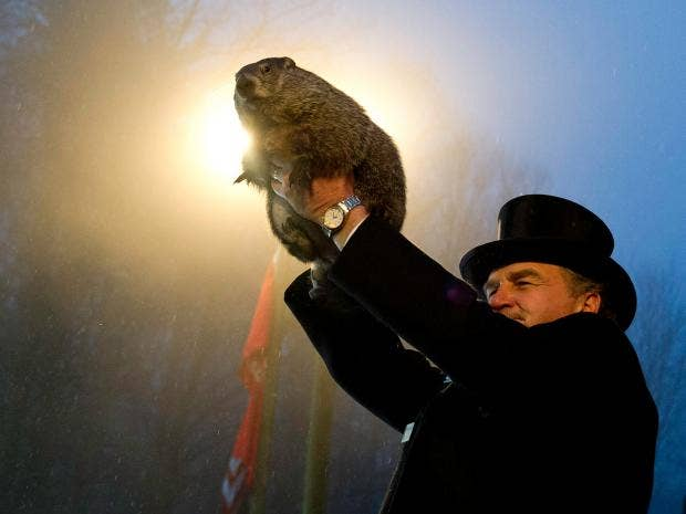 groundhog-phil-getty2.jpg
