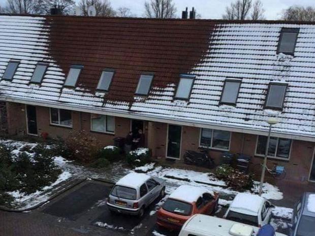 Cannabis-snow.jpg