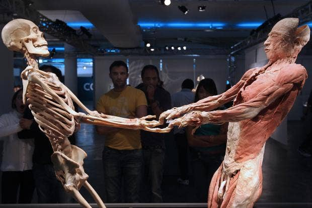 10-Cadavers-Get.jpg