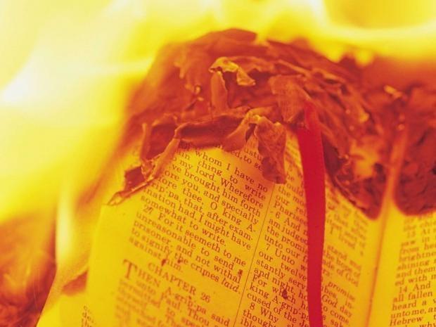 book-burning-rex.jpg