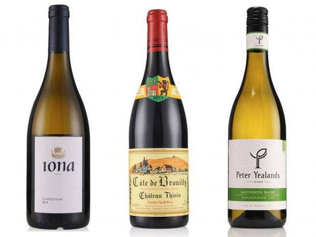 winemainpic.jpg