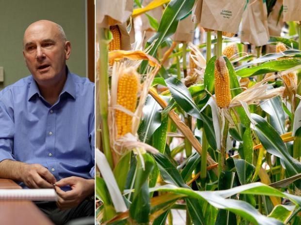10-MonsantoSplit.jpg