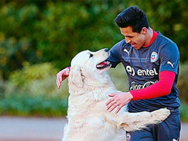 alexis-sanchez-dog.jpg