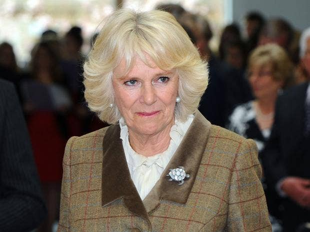 Over Half Of Uk Public Do Not Want Camilla Duchess Of