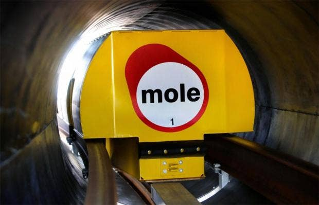 web-mole-solutions-1.jpg