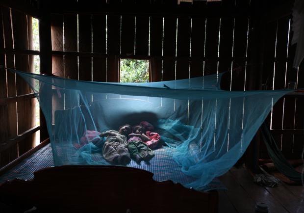 malaria-getty.jpg