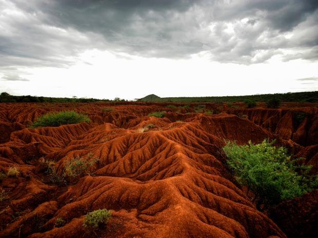 Soil-erosion.jpg