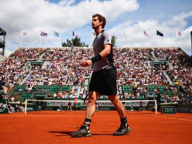 Andy-Murray3.jpg