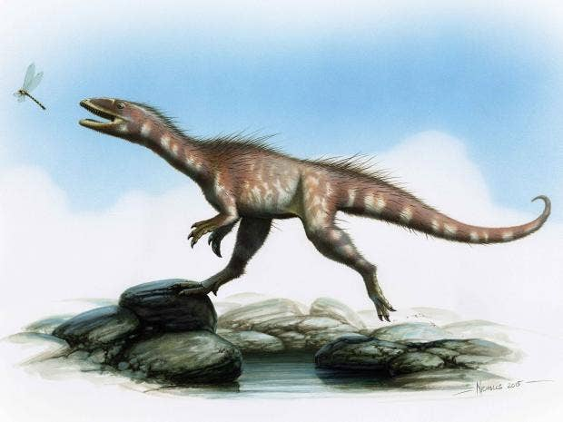 wales-dinosaur-pa.jpg