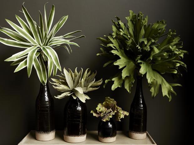 Vase Lifestyle