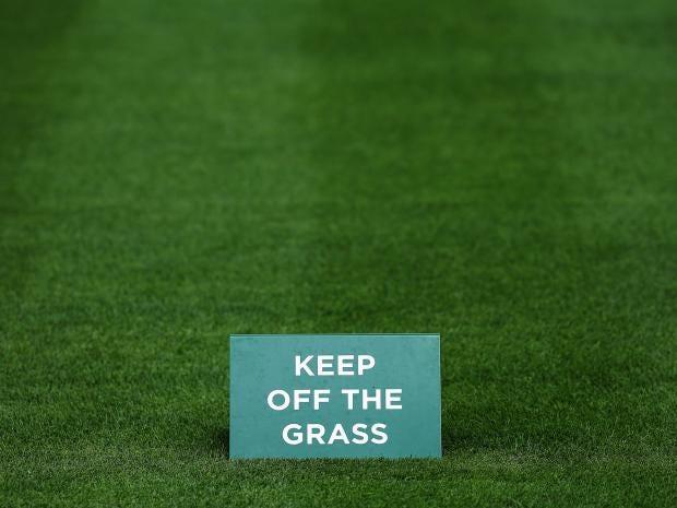 2-Grass-Get.jpg