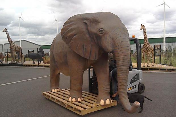 top-gear-elephant.jpg