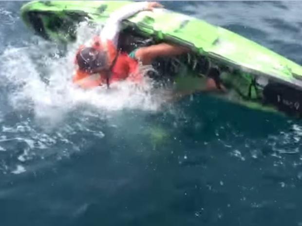 sharkattack2.JPG
