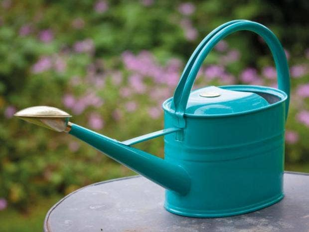 10 Best Watering Cans The Independent
