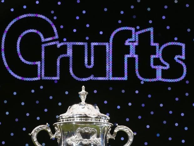 Crufts1-Getty.jpg