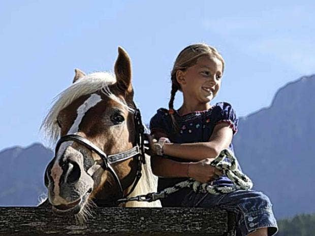 dolomites-horse.jpg