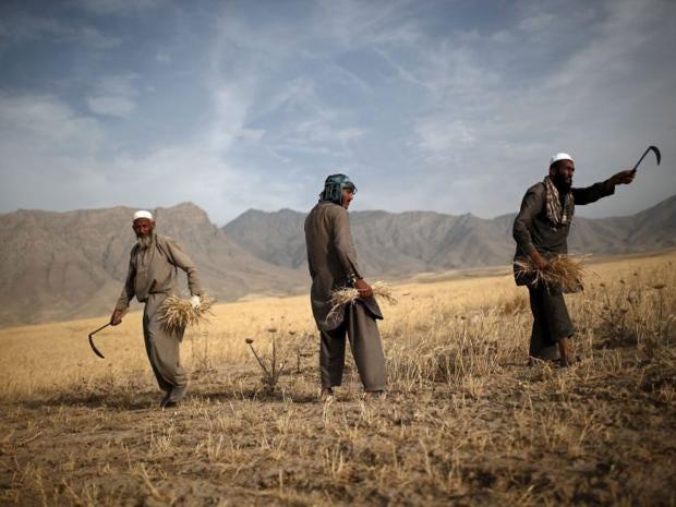Afghan-1-Reuters.jpg