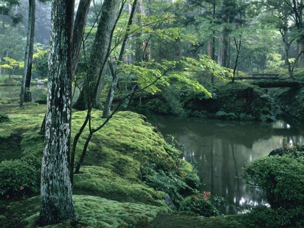 kyoto-offer.jpg