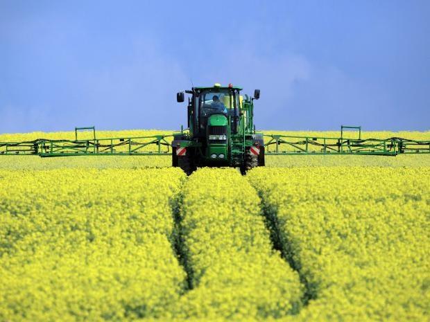 12-Oilseed-Rape-Harvest-Get.jpg