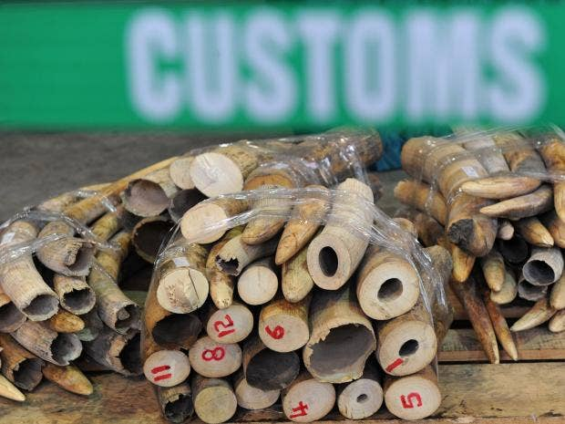 ivory-trade-afp.jpg