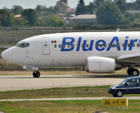 birdplane.jpg