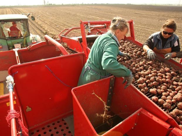 26-Russian-workers-AFP-Getty.jpg