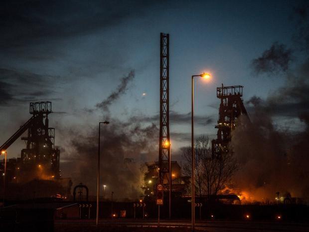Tata-plant.jpg