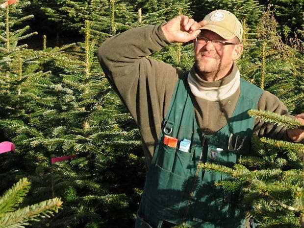 whats it like to work as a christmas tree farmer - Christmas Tree Farming