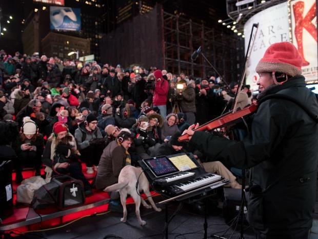 dog-concert.jpg